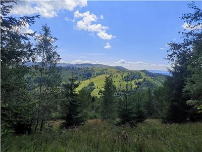 Teren de vanzare - Statiunea Muntele Baisorii