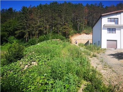 Teren de vanzare (673 mp) - Floresti